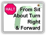 39. HALT   From Sit   About Turn Right & Forward. The handler cues the dog to heel, turns 180 degrees to his/her right, and immediately moves forward with the dog in heel position.