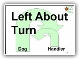 47. Left About Turn. (Turn used in schutzhund training) While moving forward with the dog in heel position, the handler does an about turn to his/her left, while the dog turns to the right, moving around the handler and back to heel position to continue moving with the handler in the new (opposite) direction. That is, the dog and handler do opposite about turns.